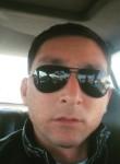 Ruslan , 35  , Turkmenbasy