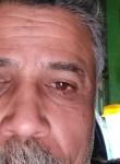 العقرب, 51  , Cairo