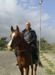 סמיר, 56  , Jerusalem