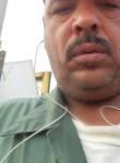 WhatsApp +96599, 35  , Al Ahmadi