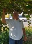 Luchian, 63  , Plettenberg