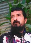 مجد النصر, 41 год, الرمثا