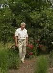 Nikolay, 82  , Lenino