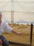 Aleksey, 44, Troitsk (MO)