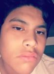 David, 19, Altamonte Springs