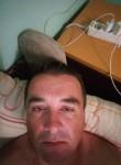 Miki, 38  , Sabac