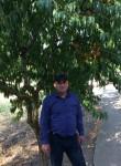Reyhan, 37  , Babaeski