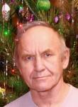Aleksandr, 68, Krasnogorsk