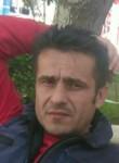 Fatih, 44  , Belorechensk