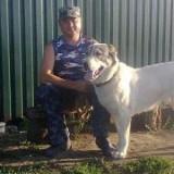 Sergey, 47  , Lubny