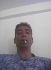 Have, 40, Morocco, Meknes