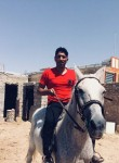 Shahin, 37  , Minab