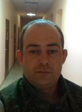 Aleksandr, 30, Russia, Gulkevichi