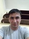 Mir, 26  , Svetlogorsk