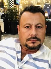 dilgec, 37, Turkey, Esenyurt