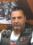 NOChNYE  VOLKI, 60  , Kashin