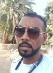 الدنجرس, 34  , Aswan
