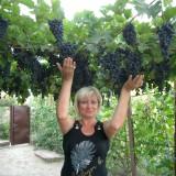 Irina, 54  , Yahotyn