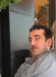 hendreen, 38  , Erbil