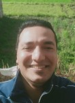 بكر الغالي, 36  , Cairo