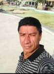 Adil, 28  , Sao Jose do Rio Preto