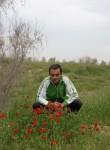 Merdan, 31  , Ashgabat