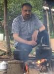 mehdibahrami