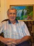Vladimir, 72  , Kremenchuk