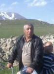 Norik, 47  , Svobodnyy