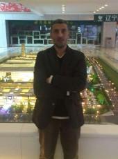 Hany, 40, Egypt, Cairo
