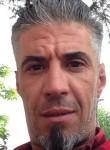 naruto, 40  , Sedrata