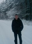 Nikolay, 31, Saransk