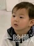 郁金香, 22, Ningbo
