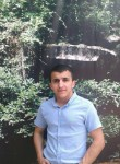 Alişan, 26  , Ungheni
