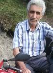 dunsun salici, 53  , Istanbul