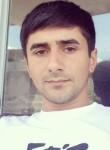 Kolya, 22  , Yerevan