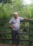 Argeu , 71  , Anastacio