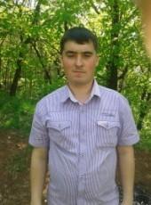 Aleksandr, 37, Russia, Gorodets