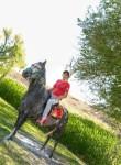 Armin Soltani, 18  , Kermanshah