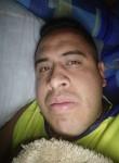Manuel , 29  , Puebla (Puebla)