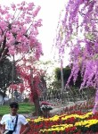 Thành Công, 31  , Haiphong