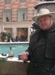 Владимир Mamedov, 71  , Ingolstadt
