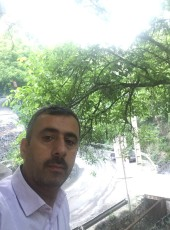 ali, 49, Iran, Mashhad