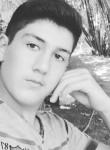 Bayram, 18  , Qazax
