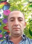 Sasun, 51  , Yerevan