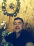 Mir, 37  , Bishkek