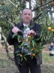 Sergey, 61  , Velsk