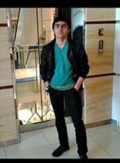 Elsen, 28, Azerbaijan, Ganja