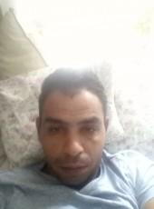 Dtefan, 36, Denmark, Copenhagen