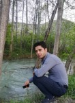 Majid, 36  , Vienna